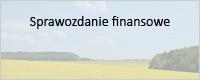 Sprawozdanie finansowe